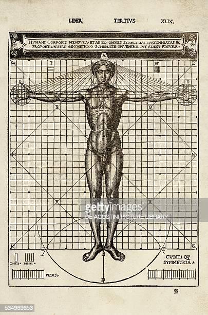 Vitruvian man drawing from De architectura by Vitruvius published by Cesare Cesariano Como Copyright Veneranda Biblioteca Ambrosiana Milan Biblioteca...