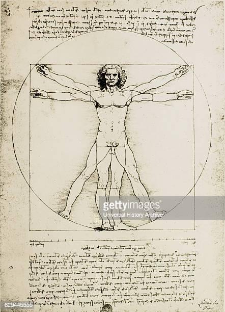 Vitruvian Man Study of Proportions Leonardo Da Vinci Drawing circa 1490