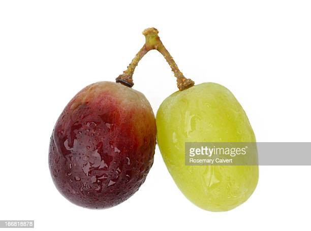 vive la difference grape style - pair stock pictures, royalty-free photos & images