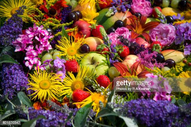 Vivid colours of summery fruits and flowers