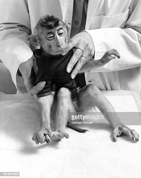 DEC 19 1982 Vivisection