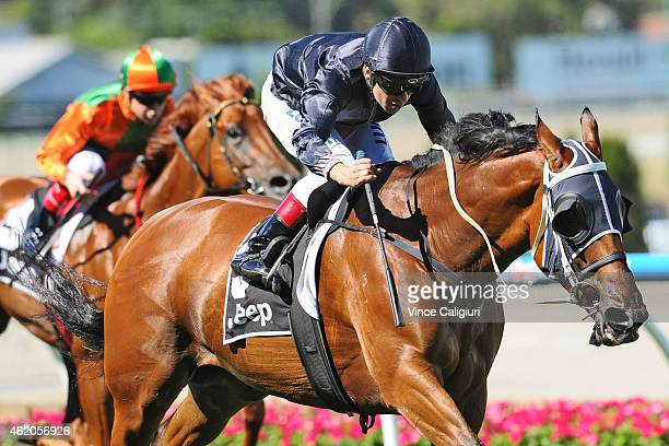 Vlad Duric riding Mourinho wins Race 7 the Jeep Australia Stakes during Melbourne racing at Moonee Valley Racecourse on January 24 2015 in Melbourne...