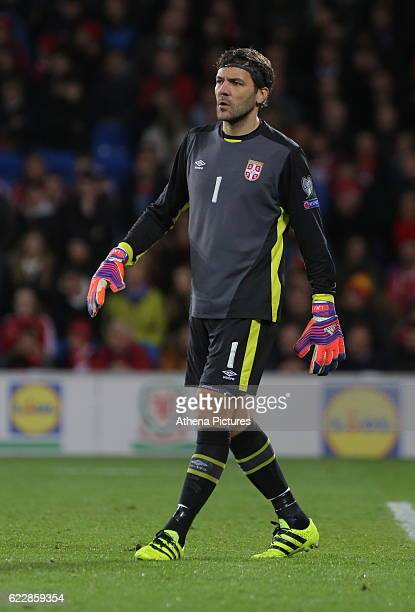 Vladimir Stojkovic of Serbia in action during the 2018 FIFA World Cup Qualifier between Wales and Serbia at the Cardiff City Stadium on November 12...