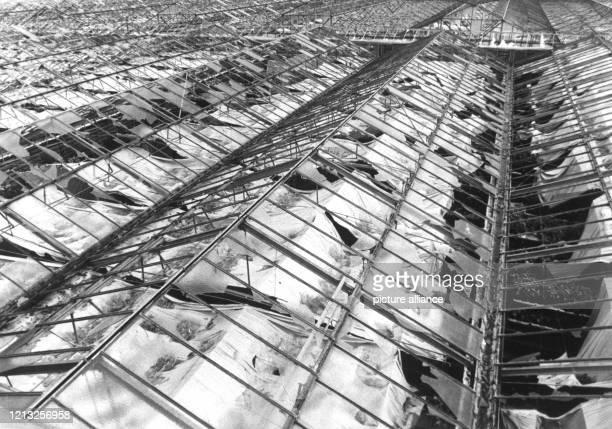 Völlig zerstört wurden diese Gewächshäuser einer Gärtnerei in Vaterstetten im Osten von München Hagelkörner in der Größe von Taubeneiern richteten am...