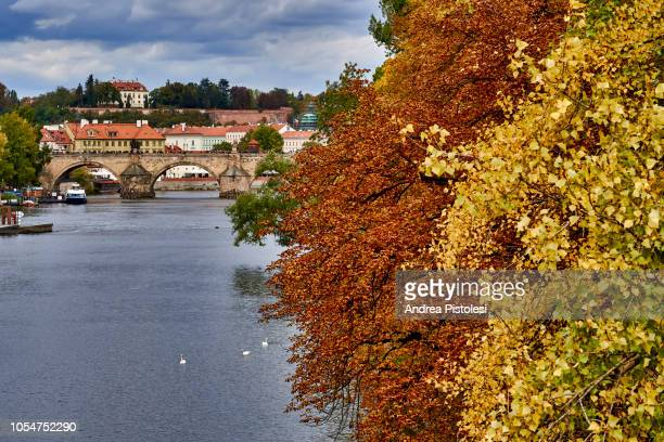 vltava river and charles bridge in prague - eastern european stock pictures, royalty-free photos & images