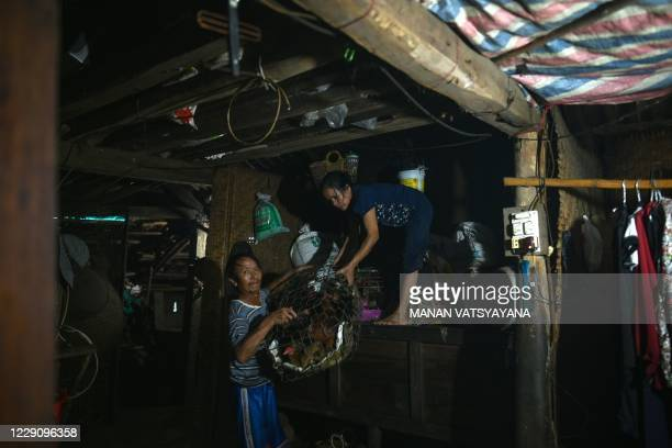 Vo Dinh Vang gives a basket of live chickens to his wife Le Thi Hanh to be kept on higher ground during heavy rain showers in Hai Lang district in...
