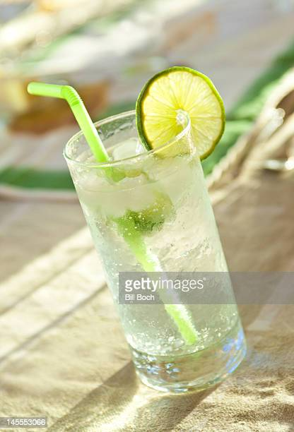 Vodka and tonic with lime slice