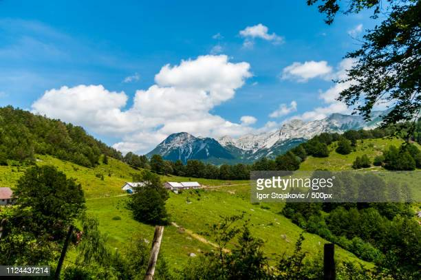 vogel mountain slovenia - vogel stock pictures, royalty-free photos & images