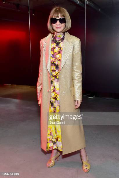 Vogue Magazine EditorInChief Anna Wintour attends the Prada Resort 2019 fashion show on May 4 2018 in New York City