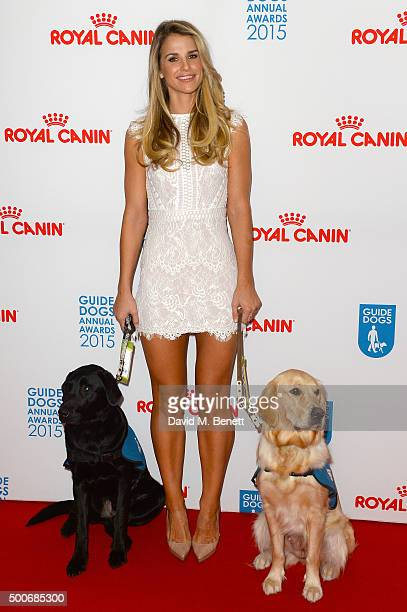 Vogue Williams attends the Guide Dogs Annual Awards 2015 at the Hilton Park Lane on December 9 2015 in London England