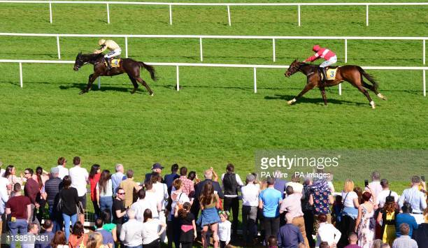 Voix Du Reve ridden by Ruby Walsh runs on to win the Ryanair Gold Cup Novice Steeplechase during day one of the Fairyhouse Easter Festival at...