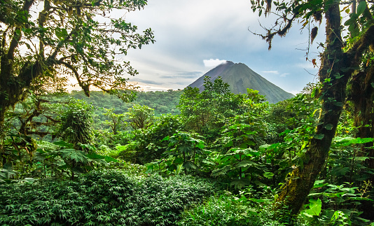 Volcan Arenal and Costa Rican Jungle 936705788