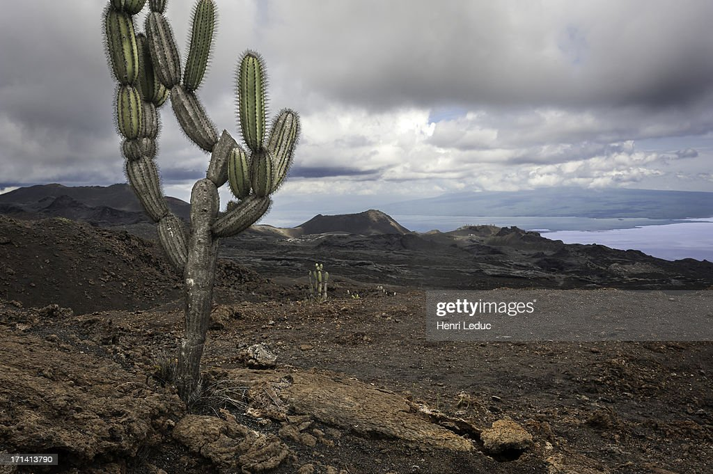 volcan Chico : Stock Photo