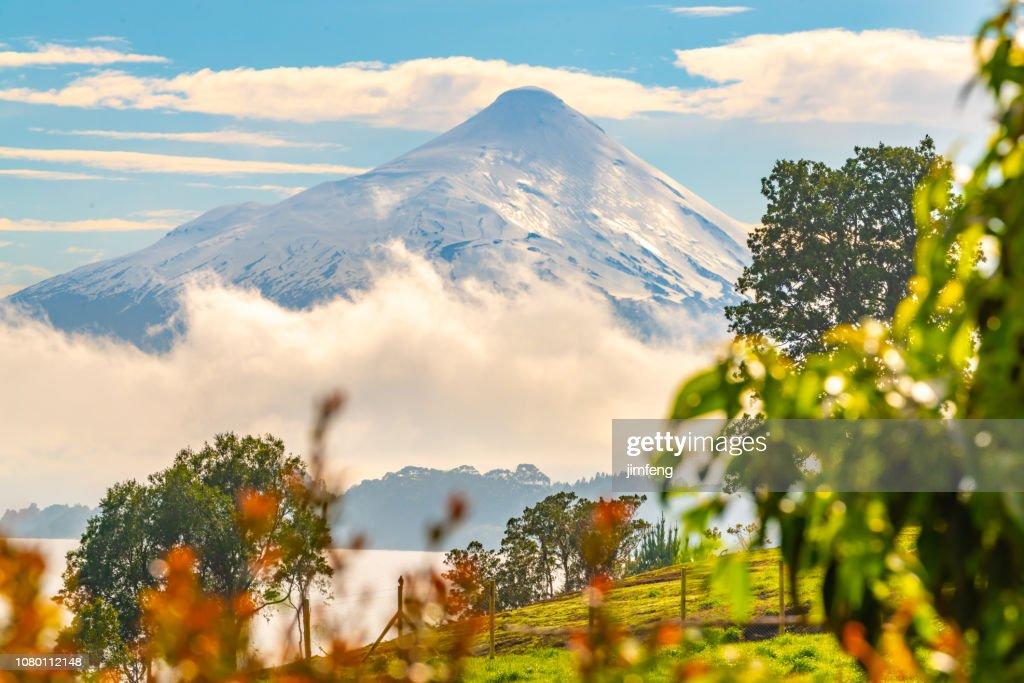 Volcan Osorno seeing from Frutillar : Stock Photo