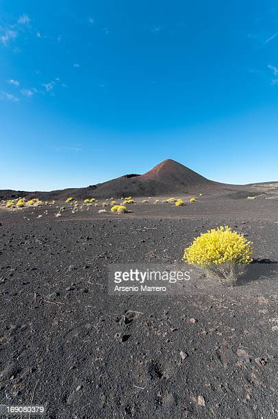 volcan siete fuentes - siete stock pictures, royalty-free photos & images