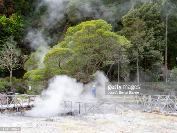 volcanic fumaroles with holes between the rocks issuing gases and very hot boiling water. island of sao miguel, azores islands, portugal. - las azores fotografías e imágenes de stock