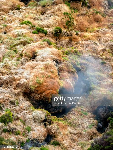Volcanic fumaroles with holes between the rocks issuing gases, surrounded with mosses and plants. Terceira Island in the Azores Islands, Portugal.