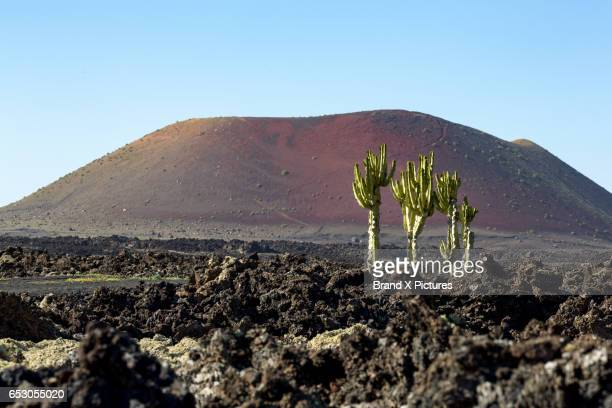 volcanic landscape in lanzarote - timanfaya national park stock pictures, royalty-free photos & images