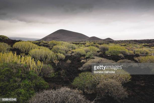 Volcanic landscape in 'Valle de Güímar' town, in Tenerife island