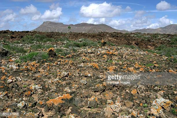 Volcanic landscape Malpais Grande Fuerteventura Canary Islands The oldest of the Canary Islands Fuerteventura was formed by a volcanic eruption...