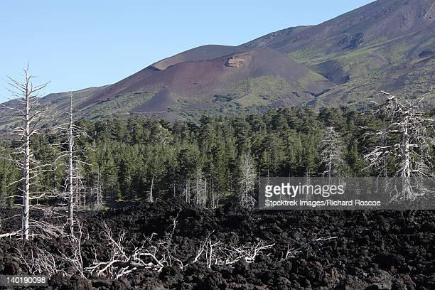 Volcanic landscape of Mount Etna.