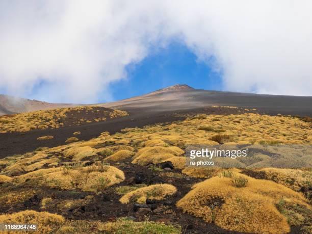 paisaje volcánico - sicilia fotografías e imágenes de stock
