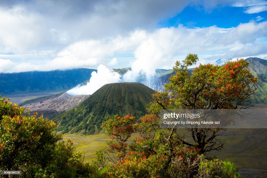 Volcanic landscape scene of the Bromo and Batok craters, Indonesia. : Stock Photo