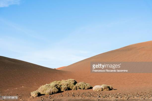 volcanic landscape, timanfaya national park, lanzarote, canary islands - francesco riccardo iacomino spain foto e immagini stock