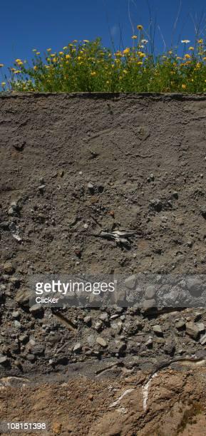 Volcánica capas Display Ash, Rock y suciedad