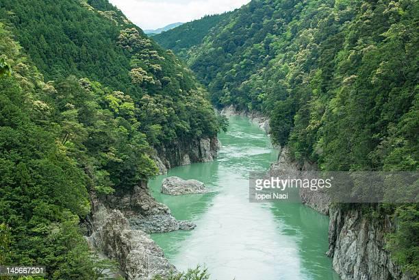 volcanic river gorge with lush forest - präfektur wakayama stock-fotos und bilder