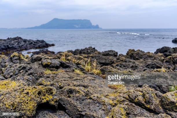 volcanic rock at the beach of jeju island - sungjin kim stock pictures, royalty-free photos & images