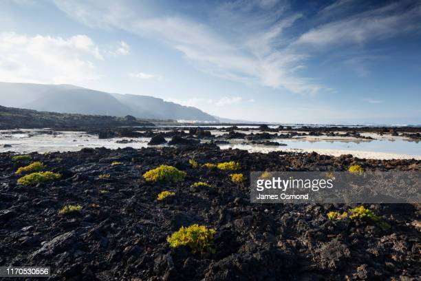 volcanic rocks on beach with village and cliffs in the distance. - volcanic rock stock pictures, royalty-free photos & images