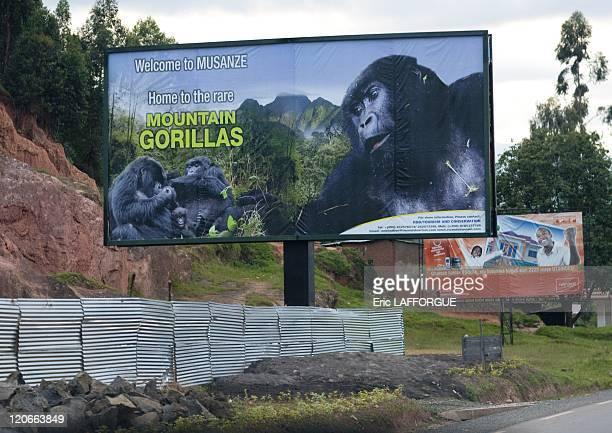Volcanoes national park in Rwanda on March 21 2010 Volcanoes National Park lies in northwestern Rwanda and borders Virunga National Park in the...