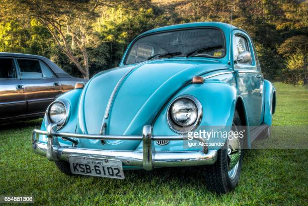 Volkswagen Beetle or Bug