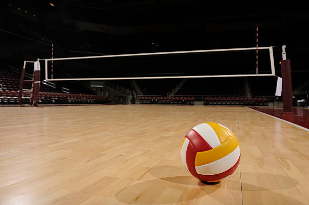 Free volleyball court Images, Pictures, and Royalty-Free Stock ...