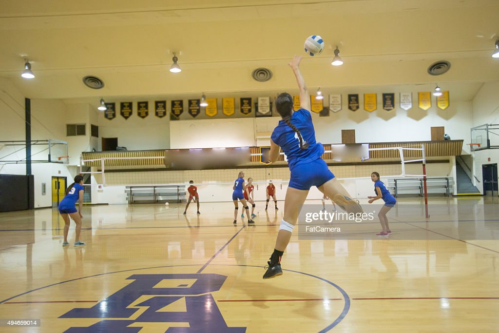 Volleyball : Stock Photo