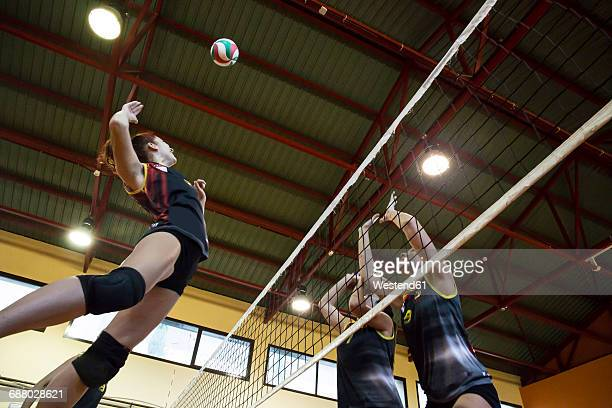 volleyball player spiking the ball during a volleyball match - volleyball mannschaftssport stock-fotos und bilder