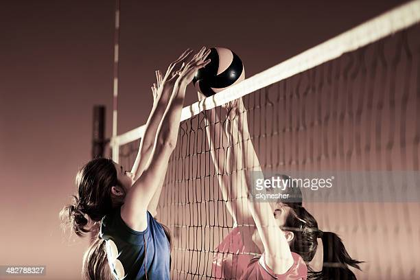 volleyball players in action. - team sport stock pictures, royalty-free photos & images