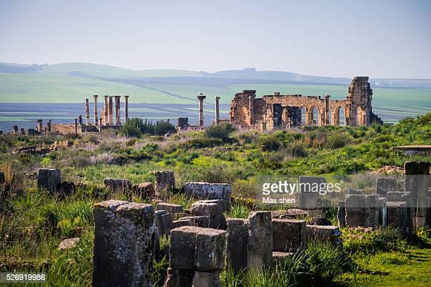 volubilis ruins in morocco - volubilis fotografías e imágenes de stock