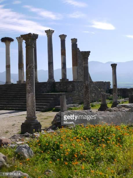 volubilis ruins near meknes, morocco - volubilis fotografías e imágenes de stock