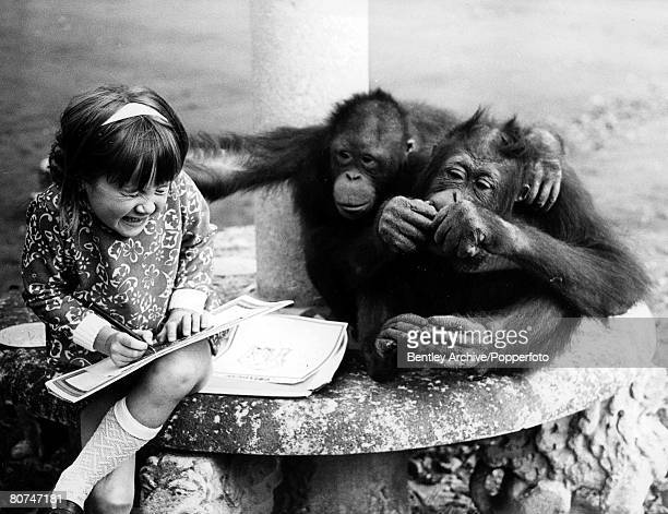 Volume 2 Page 59 Pic 3 Chessington Zoo Surrey England 17th October 1969 A young girl with two monkeys
