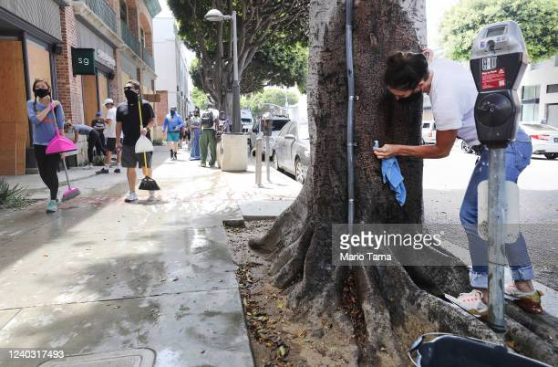 A volunteer cleans graffiti off a tree as other volunteers walk nearby a day after looting occurred amid protests on June 01 2020 in Santa Monica...