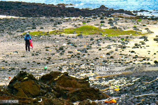 A volunteer collects garbage on the shore of Isabela Island in the Galapagos Archipelago in the Pacific Ocean 1000 km off the coast of Ecuador on...