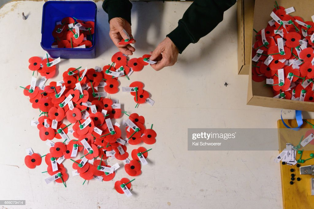 RSA Volunteers Make More Than A Million Poppies In Preparation For Poppy Day 2017 : News Photo