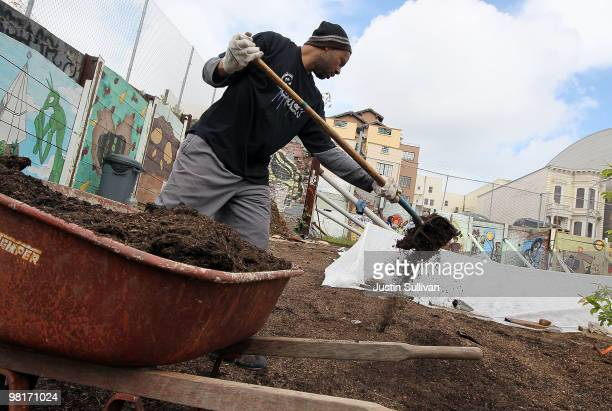 A volunteer distributes mulch at the 'Free Farm' March 31 2010 in San Francisco California A group of garden activists have constructed a community...