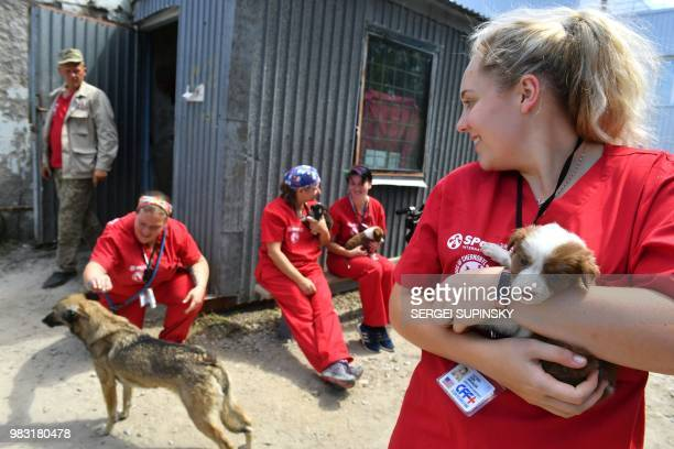 A volunteer of Clean Futures Fund holds a stray puppy outside the improvised animals hospital just near the Chernobyl power plant on June 8 2018 The...