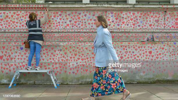 Volunteer paint red hearts on the National Covid Memorial Wall in London. The National Covid Memorial Wall in London outside St Thomas' Hospital is...