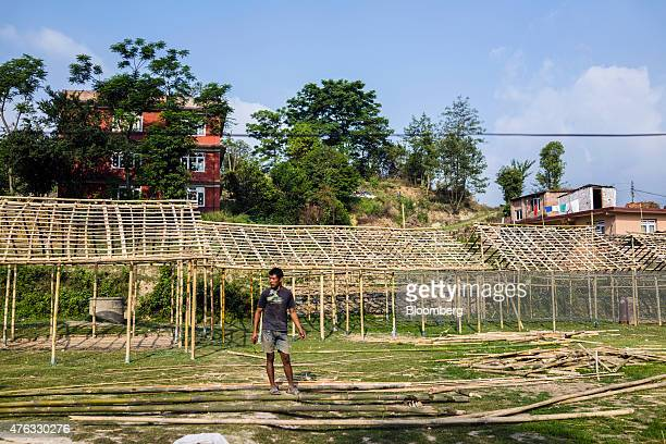 A volunteer prepares bamboo poles while building makeshift school buildings in Champi Kathmandu Valley Nepal on Friday May 29 2015 Nepal's gross...