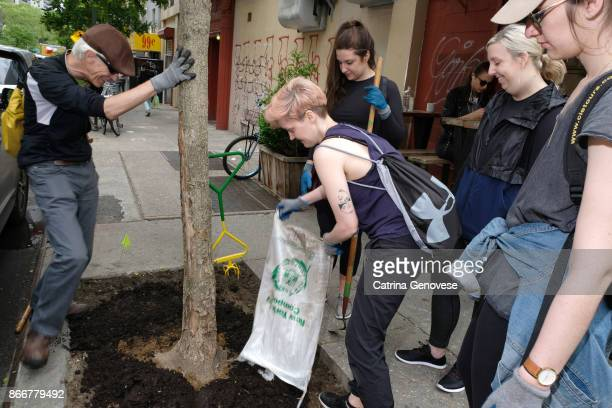 volunteer residents work on tree care in new york city - vanguardians stock pictures, royalty-free photos & images