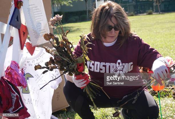 Volunteer Robin Bonchick removes items left at the memorials for the Marjory Stoneman Douglas High School shooting victims Thursday March 15 at Pine...